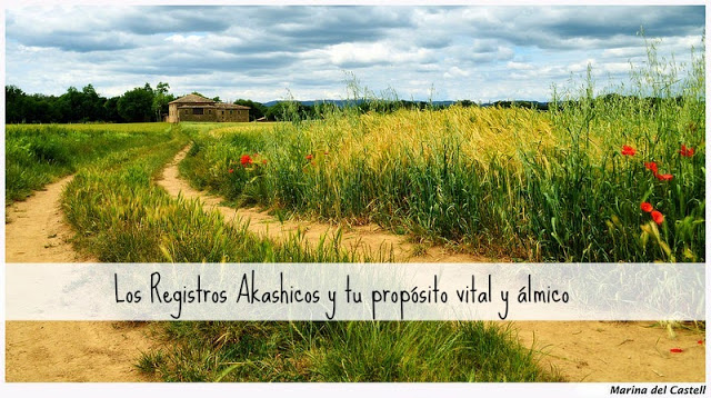 Descubre tu misión de vida con los Registros Akashicos